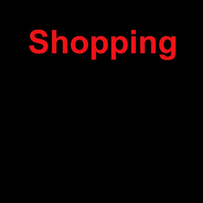 Manolo Bahnik Shopping